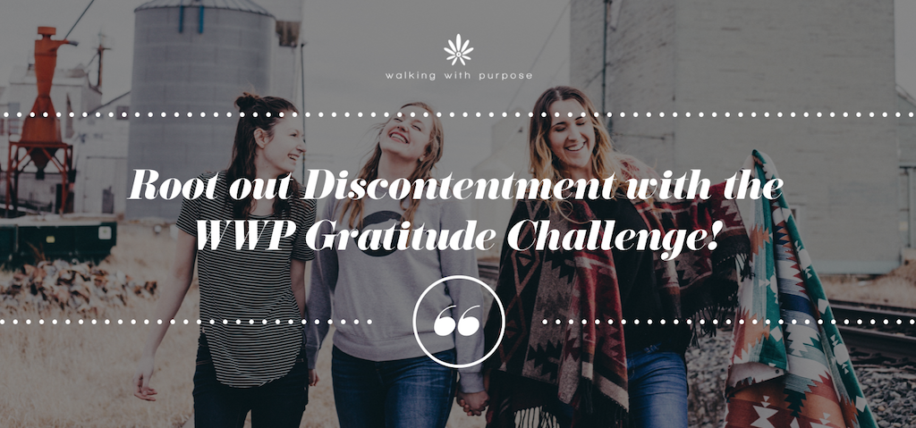 gratitude challenge blog header image